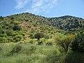 Coltauco, H-30. - panoramio - R.A.T.P. (9).jpg