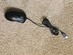 Computer mouse 1 2015-02-28.JPG