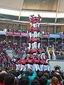 Concurs de Castells 2008 P1220470.JPG