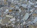 Conglomerate.3025.JPG