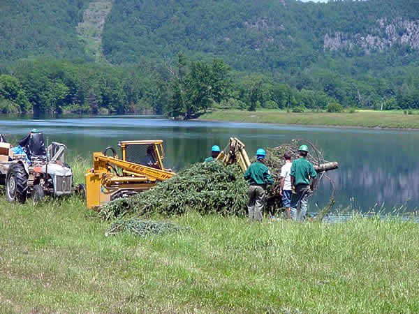 Connecticut River restoration Farilee VT1