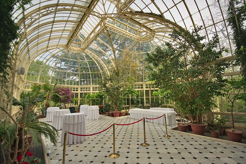 800px-Conservatory_at_Farmleigh%2C_interior.jpg