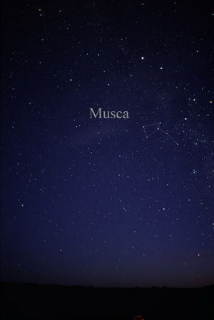 Musca - The constellation Musca as it can be seen by the naked eye