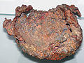 Copper skull (Mesoproterozoic, 1.05-1.06 Ga; Centennial Mine, Upper Peninsula of Michigan, USA) (16704100684).jpg
