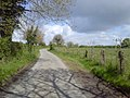 Country Road, Co Meath - geograph.org.uk - 1857452.jpg