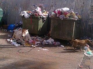 Dog Waste Bins For Sale