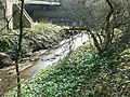 Cow Beck joining the River Aire - geograph.org.uk - 392544.jpg