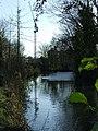 Crane at Bishop's Stortford - geograph.org.uk - 1058931.jpg