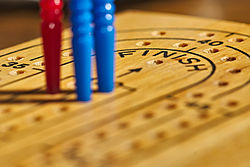 Cribbage board with pegs2.jpg