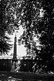 Croce tra gli alberi.jpg