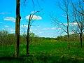 Cross Plains State Park - panoramio.jpg