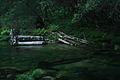 Cruce de ríos (4617432231).jpg