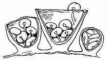 Drawing of three cup-shaped structures vertically bisected to reveal the contents within. The middle cup structure is the largest; it has an open top and has five smaller disc shaped object within, all attached to thin cords to the cup. The left and right structures are smaller, and also contain discs attached by cords; the rightmost structure is the smallest, and its top is not open, unlike the other two structures.