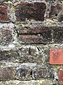 Cut Mark at Scarborough, Ramshill Road by Steps.jpg