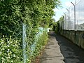 Cycleway and Fences - geograph.org.uk - 843993.jpg