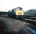 D1034 Western Dragoon scrap line Laira.jpg