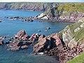 Dale St Anns Head - panoramio.jpg