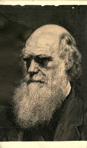 File:Darwin - La Descendance de l'homme, 1881.djvu