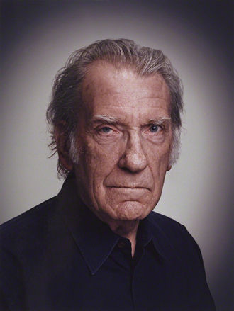 The Wars of the Roses (adaptation) - David Warner in 2013. Warner was a relatively unknown actor when he was cast as Henry VI, and his casting was considered a risk by some. However, his subsequent performance received critical acclaim.
