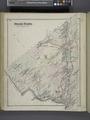 Deer Park (Township) NYPL1652150.tiff