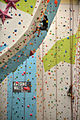Defence Forces Climbing Competition (15014768960) (2).jpg