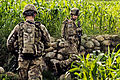 Defense.gov News Photo 10807-F-RN211-177 - U.S. Army Spcs. Kyle Graves right and Michael Bartolo navigate through rice paddies and corn fields while on a combat patrol to sweep for roadside.jpg