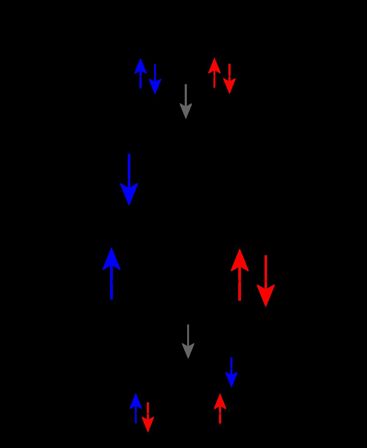 Dexter Electron Transfer Wikipedia
