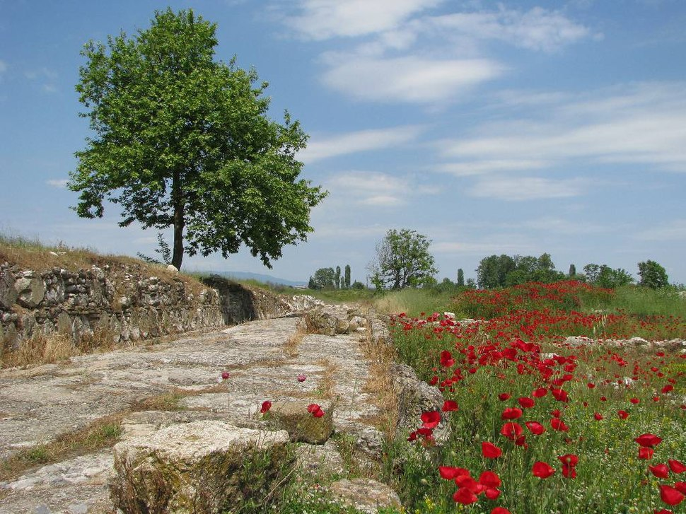 Dion archaeological site 107