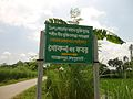 Direction sign board to grave of Martyr Khokon (Joypurhat-5900 group) - panoramio.jpg