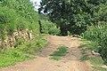 Dirt Road - panoramio (4).jpg