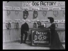 File:Dog Factory (1904).ogv