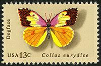 Альбом пользователя ЕкатеринаКостинская: Бабочка Калифорнийский собакоморд. Коллекция 36 бабочек-малявок