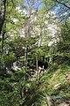 Dolina rečice Perast 01.jpg