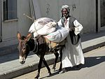 Donkey Transport (8383370559).jpg