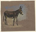 Drawing, Study. A mule, 1872–75 (CH 18369185).jpg