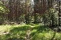 Dresdner Heide - panoramio.jpg