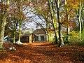 Drive leading to Coach House, Newbrough - geograph.org.uk - 1583654.jpg