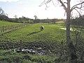 Drumanaway Townland - geograph.org.uk - 290337.jpg
