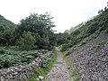 Dry stone wall along the Heddon's path - geograph.org.uk - 917547.jpg