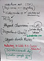 E-Learning Einführung.jpg