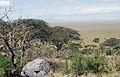 Eastern Serengeti 2012 05 31 2844 (7522636490).jpg