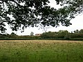 Eastlands from Pear Tree Copse. - geograph.org.uk - 530056.jpg