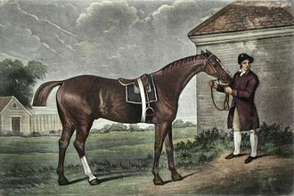 1780 Epsom Derby - Eclipse, sire of three of the contenders, as painted by George Stubbs (1724-1806)