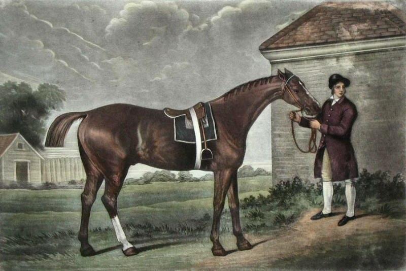 Eclipse(horse)