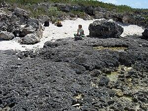 Eemian (Late Pleistocene) erosion surface in a...