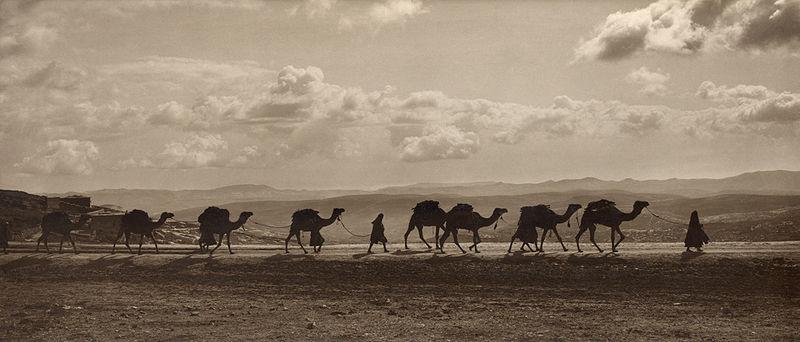 File:Egyptian camel transport3.jpg