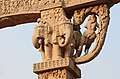 Elephants on North Torana, Sanchi.jpg