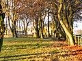 Ellerslie Lodge - geograph.org.uk - 109849.jpg