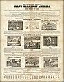 Emancipator -- Extra. Slave Market of America.jpg