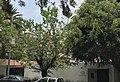 Embajada de Guatemala en Mexico.jpg